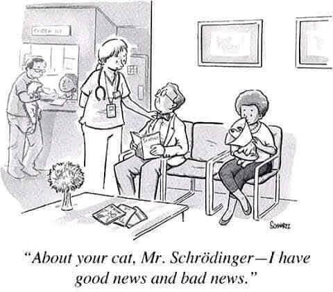 Cat Science.jpg