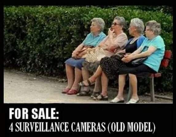 Four Surveillance Models.jpg