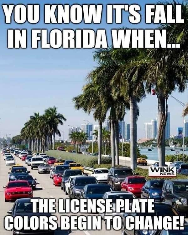 Fall in Florida.jpg