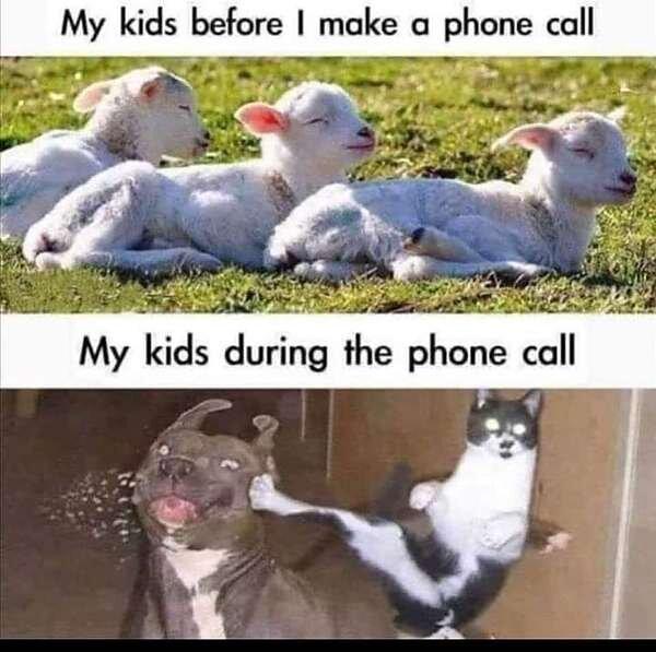 Kids During Phone Call.jpg